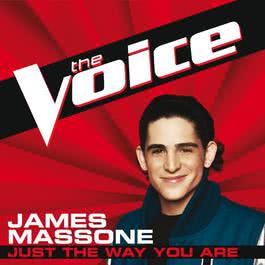 Just The Way You Are 2012 James Massone