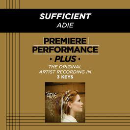 Sufficient 2009 Adie