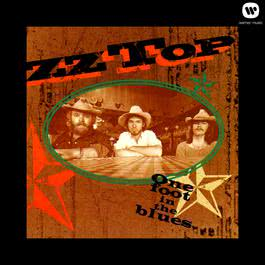 Sure Got Cold After The Rain Fell 1994 ZZ Top