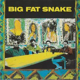 Big Fat Snake 1991 Big Fat Snake