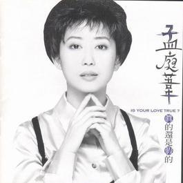 爱情stay 1995 孟庭苇