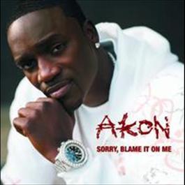 Sorry, Blame It On Me 2007 Akon