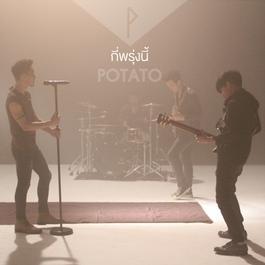 อัลบั้ม Potato (New Single 2013)