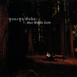Percussion Solo (Album Version) 1996 George Duke