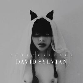 Sleepwalkers 2010 David Sylvian