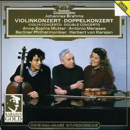 Brahms: Violin Concerto; Double Concerto 1993 Chopin----[replace by 16381]