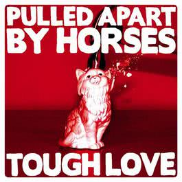 Tough Love 2012 Pulled Apart By Horses