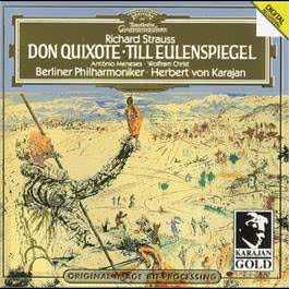 Strauss, R.: Don Quixote, Op. 35; Till Eulenspiegel, Op.28 2008 Chopin----[replace by 16381]