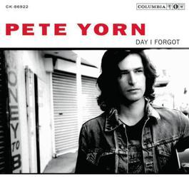 Day I Forgot 2003 Pete Yorn