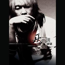 Kang Kang Grey Tone 2007 康康