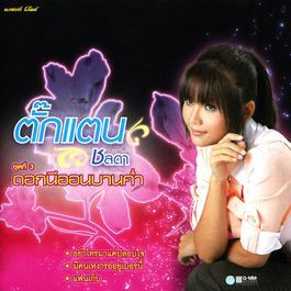 แฟนเก็บ 2008 ตั๊กแตน ชลดา