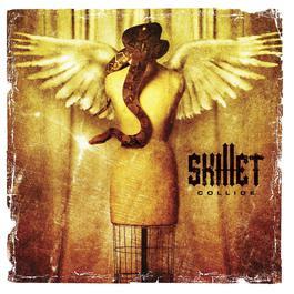 Collide 2013 Skillet
