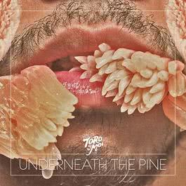 Underneath The Pine 2016 Toro Y Moi
