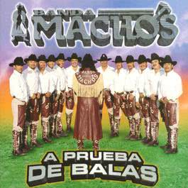 No me toques 2010 Banda Machos