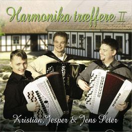 Harmonika Træffere II 2012 Kristian