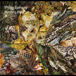 Running Blind 2011 Philip Selway