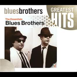 Messin' With The Kid (Live Version) 2003 The Blues Brothers
