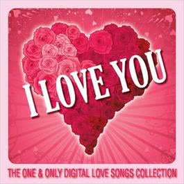 I Love You 2007 Various Artists