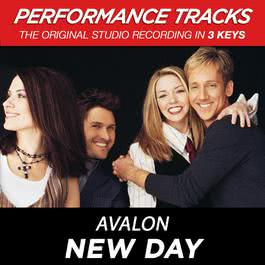 New Day (Performance Tracks) - EP 2009 Avalon