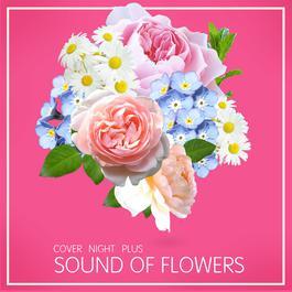 อัลบั้ม COVER NIGHT PLUS SOUND OF FLOWERS