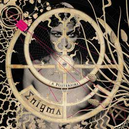 A Posteriori 2006 Enigma