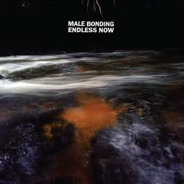Endless Now 2011 Male Bonding