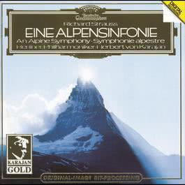 Strauss, R.: An Alpine Symphony Op.64 1993 Chopin----[replace by 16381]