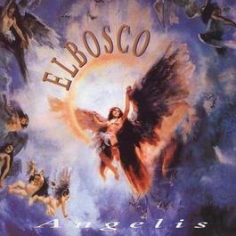 Angelis 2009 Elbosco