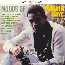 Moods Of Marvin Gaye 2004 Marvin Gaye