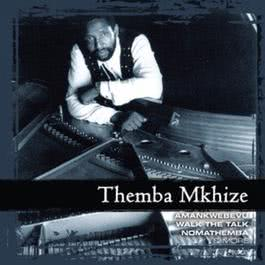 Collections 2010 Themba Mkhize