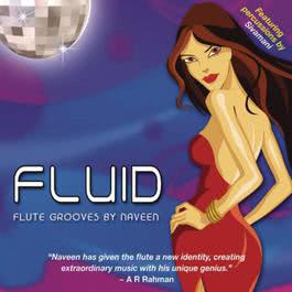Fluid 2010 Naveen Kumar