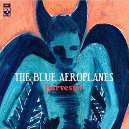 Harvester 2007 The Blue Aeroplanes