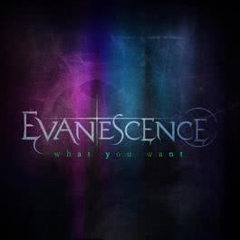 What You Want 2011 Evanescence