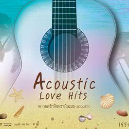 Acoustic Love Hits 2011 Various Artists