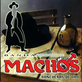 No compro amores 2004 Banda Machos