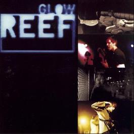 Glow 2001 Reef