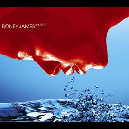 Pure 2009 Boney James