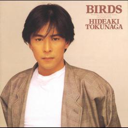 Birds 2013 Hideaki Tokunaga
