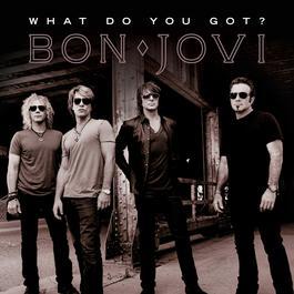 What Do You Got? 2010 Bon Jovi