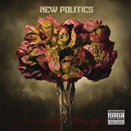 New Politics 2010 New Politics