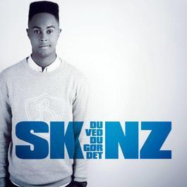 Du Ved Du Gør Det 2012 Skinz