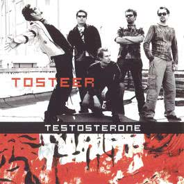 Testosterone 2003 Tosteer