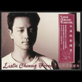 永远的张国荣 2007 Leslie Cheung (张国荣)