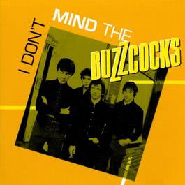 I Don't Mind 2003 The Buzzcocks