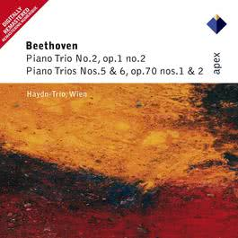 Beethoven : Piano Trio No.2 in G major Op.1 No.2 : II Largo con espressione 2004 Haydn Trio Wien