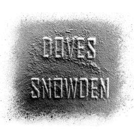 Snowden 2005 Doves