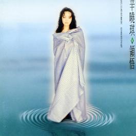 领悟 1994 Winnie Hsin (辛晓琪)