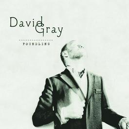 Foundling 2010 David Gray