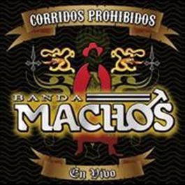 Corridos Prohibidos En Vivo 2008 Banda Machos