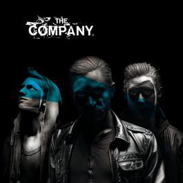 The Company 2008 The Company